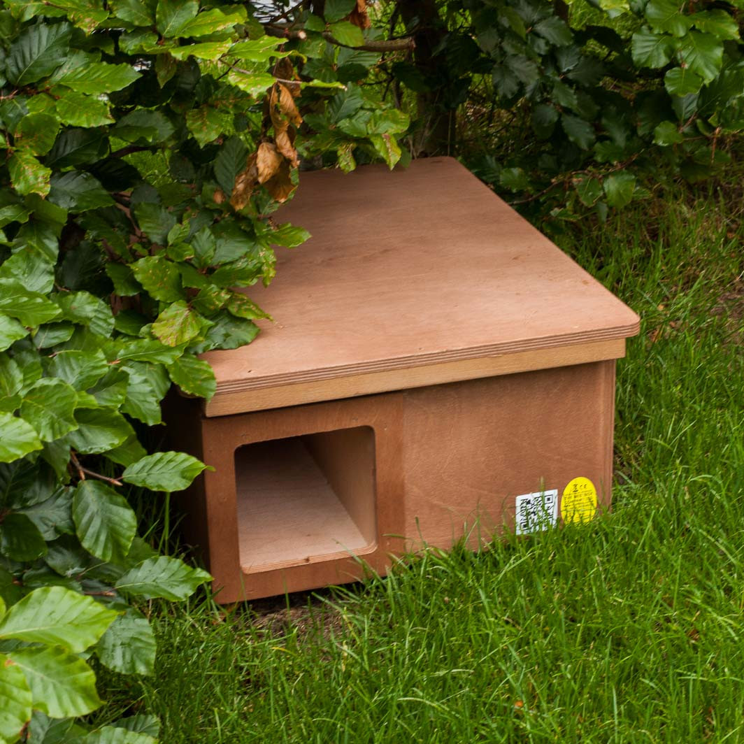 hedgehog nest box elite ecology uk ecological consultants. Black Bedroom Furniture Sets. Home Design Ideas