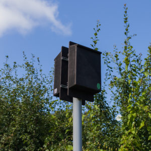 Pole_Mounted_Bat_Box_Double_Roost_Maternity_25b33cf6-917c-46b0-aebc-a60822506f35